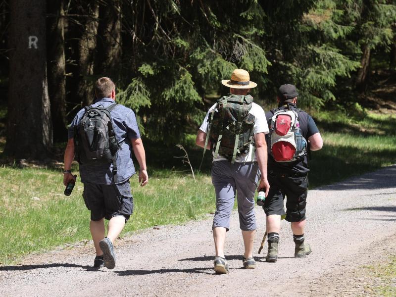 200.000 Kilometer an Wanderwegen stehen in Deutschland zur Verfügung. Foto: Bodo Schackow/dpa-Zentralbild/dpa (© Bodo Schackow)