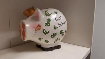Foto: Rekordjahr für die Sparkassen MM-LI-MN -