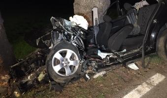 Foto: Autofahrer (19) prallt auf B308 bei Weiler in Baum - Polizei vermutet Sekundenschlaf als Unfallursache