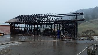 Foto: Maschinenhalle brennt in Immenstadt vollständig nieder -