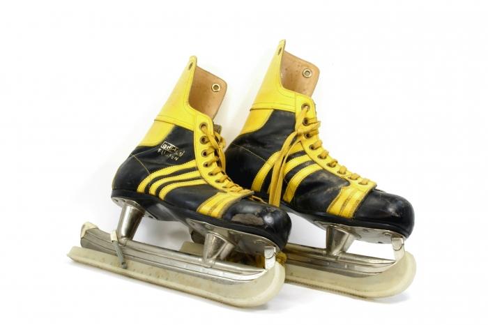 frauen bundesliga eishockey
