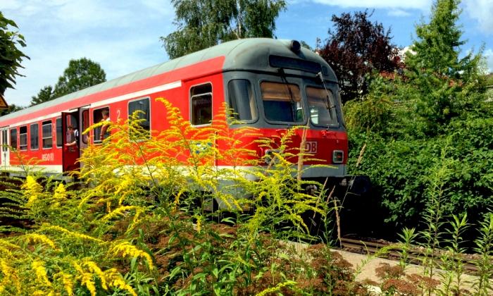 Elektrifizierung Und Ausbau Der Strecke München Lindau