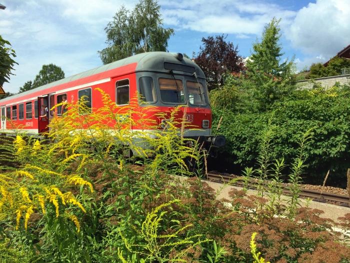 Endgültiger Zuschlag Für Db Im Allgäu Bahn Verspricht Neue